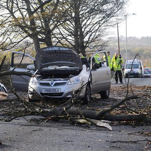 A woman has died after a tree fell onto her car amid stormy weather in Wakefield