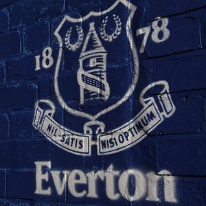 Everton's academy has been awarded elite status by the Premier League