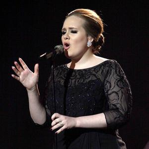 Adele has joined other stars in covering a Bob Dylan song for International Human Rights Day