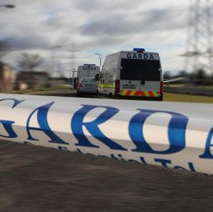 Gardai are urging witnesses to come forward after two men were killed in separate road accidents