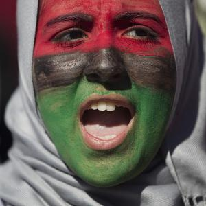 Demonstrators near the White House, Washington DC, in a show of solidarity with the Libyan protesters (AP)
