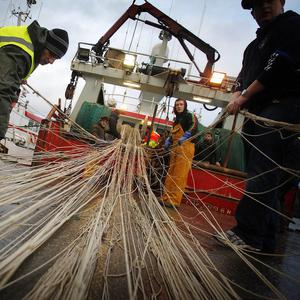 Campiagners have claimed plans to reform Europe's fishing industry would not stop the destruction of fish stocks for at least 10 years