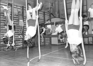 Ropeworkers at Methody- otherwise pupils getting down to it in the gym, 1975.