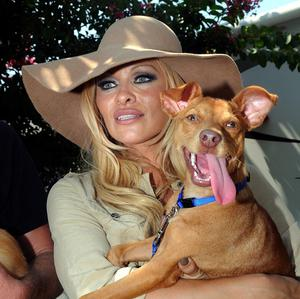 Pamela Anderson poses with one of her adopted pooches