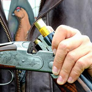 Gun safety was highlighted when a dog in the US accidentally shot his owner by stepping on the trigger of a loaded shotgun