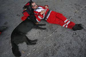 A rescue worker from Luxemburg rest with his search dog at the tarmac of the airport in Port-au-Prince, Haiti, Friday, Jan. 15, 2010. Search-and-rescue, medical and other specialists from different countries continue to arrive in Haiti after the powerful earthquake that hit the country on Tuesday