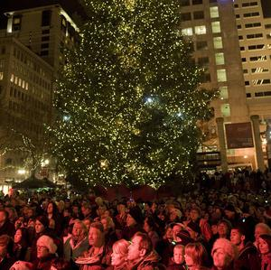 A Somali-born teenager was arrested at the tree lighting ceremony in Oregon after he allegedly tried to blow up a fake bomb (AP)