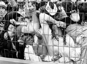 Fans crushed against the perimeter fence at Hillsborough