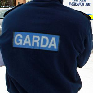 Gardai have discovered an oil laundering plant in Co Louth