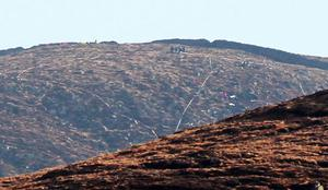 General view of the crash scene in the Mourne  Mountains