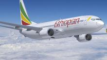 An Ethiopian Airlines plane with 90 people on board has crashed into the sea (AP)