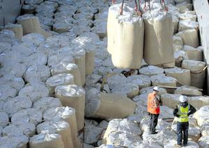 Dublin port workers yesterday unloading the 1,400 bags of animal feed which contained 120 million smuggled cigarettes