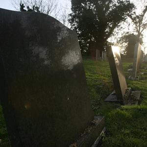A senior British diplomat has lost the sight in one eye after being attacked in a west London cemetery