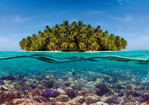 Coral reef and the Island