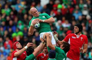 Paul O'Connell has been ruled out of Ireland's visit to New Zealand