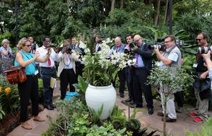 Photographers photograph an orchid named in honour of Diana, Princess of Wales at Singapore Botanical Gardens ahead of a visit by Prince William, Duke of Cambridge and Catherine, Duchess of Cambridge on day 1 of their Diamond Jubilee tour on September 11, 2012 in Singapore.