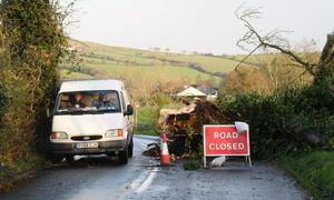 A tree lies across the Duncastle Road between Newbuildings and Donemana this morning following thursday nights storms. The road was closed last night and is now passable with care.  12.11.10