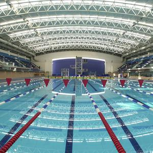 A complex tax case centred around the building of the National Aquatic Centre in Dublin cost the state 11 million euro in consultants' fees