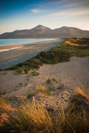 Mourne Mountains from Murlough Nature Reserve. Submitted by Barry McQueen