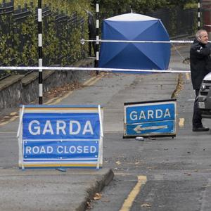A cyclist has died in a road accident