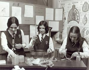St Dominic's- Eight Annual Young Scirntists Exhibition, 1971.
