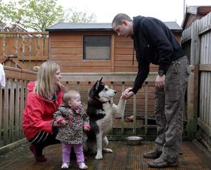 John Marrs pictured at his home in Dunmurray with his wife Niamh, one-year-old daughter Sadhbh and their husky dog Leon.