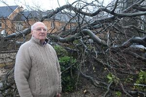 Samuel Douglas who was woken up early on Tuesday morning when a tree collapsed into his from garden during high winds. It is  second time that a tree has fallen into his garden in six months at Broomhill Avenue in Londonderry