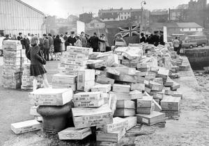 """Part of the consignment of crated fish from Ardglass which has been declared """"black"""" by the Seamen's Union, lies on the quayside. 11/6/1966"""