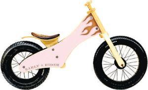 CHILDREN <b>Early Rider Classic</b><br/>  Can you imagine getting one of these for Christmas as a twoyear- old? London-based Early Rider's SoCal-inspired scootalongs, which come in three sizes, aren't cheap but are fast becoming design classics.  <b>Where</b> www.earlyrider.com  <b>How much</b> £110