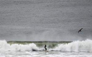 LONG BEACH, NY - OCTOBER 28:  A man surfs as Hurricane Sandy approaches on October 28, 2012 in Long Beach, New York. The storm, which could affect tens of millions of people in the eastern third of the U.S., is expected to bring days of rain, high winds and possibly heavy snow in parts of Ohio and West Virginia. New York Governor Andrew Cuomo announced that New York City will close its bus, subway and commuter rail service Sunday evening ahead of the storm.  (Photo by Mike Stobe/Getty Images)