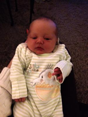 "Rachel Kernohan born 25 September 2012 at Craigavon Area Hospital to parents Emma and David from Ballindery Lisburn. <p><b>To send us your Baby Pics <a href=""http://www.belfasttelegraph.co.uk/usersubmission/the-belfast-telegraph-wants-to-hear-from-you-13927437.html"" title=""Click here to send your pics to Belfast Telegraph"">Click here</a> </a></p></b>"