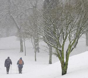 A couple walk through heavy snow in Cheethams Park, Stalybridge, Cheshire