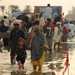 Pakistani flood survivors migrate to safer areas in Baseera near Multan, Pakistan (AP)