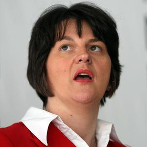 Northern Ireland Assembly Economy Minister Arlene Foster has called for the country's interests to be protected in any UK loan as part of the bailout of the Republic of Ireland.