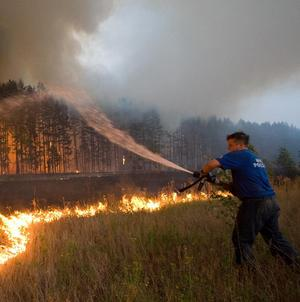 A firefighter attempts to extinguish a forest blaze near the village of Dolginino in the Ryazan region, Russia