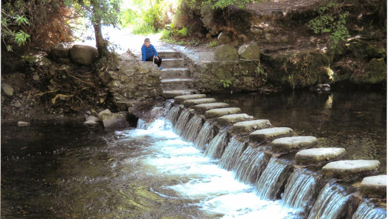Walk Of The Week Tollymore Forest Park A Peaceful Forest Walk Where The Waters Meet Belfasttelegraph Co Uk