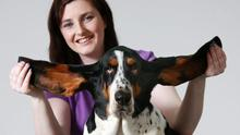 Lisa Rea has started her own dog-grooming salon