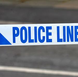 Police have arrested a man after the body of a woman was discovered in a Portadown house