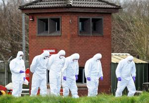 Forensics team searches the area