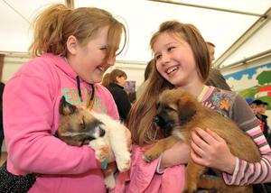 Nadia Moore and Rebecca Wallace from Annalong with puppies in the childrens farm at the Balmoral show