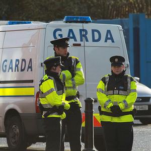 Gardai are questioning a man over the murder of Andrew Allen