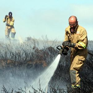 Scores of firefighters fought a blaze which broke out in Moneyscalp Forest, near Bryansford