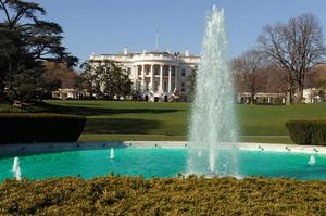 The South Lawn Fountain is dyed green in honor of St. Patrick's Day at the White House March 17, 2010 in Washington DC