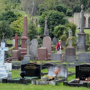 Six graves have been damaged after a stolen car reversed through a cemetery