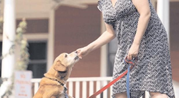 Home comfort - Jennifer Niesslein finds relaxing with her dog brings more happiness than advice from self-help books