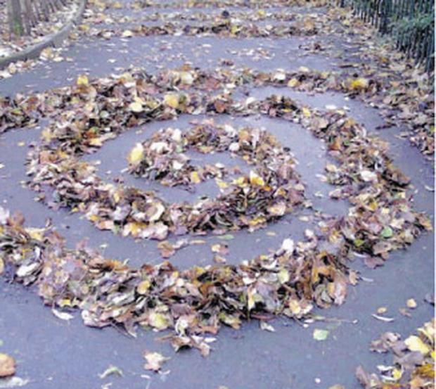 Circles and spirals were among the ornate patterns of leaves that baffled walkers in Belfast's Botanic Gardens in recent weeks.
