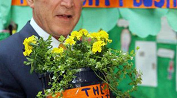 US President George Bush with a plant he bought from pupils at Lough View Intergrated Primary School in Belfast, on a visit to Northern Ireland yesterday