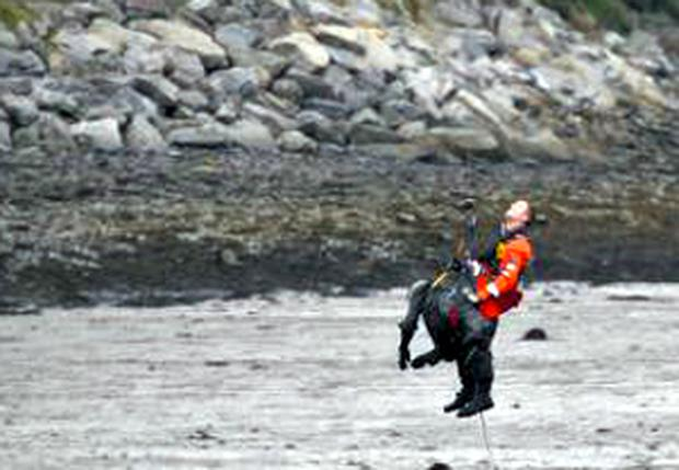 Rescue at at Fahan Creek, Co Donegal