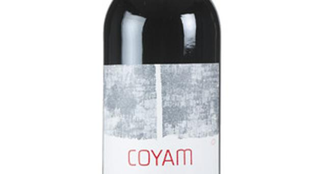 <b>Coyam Emiliana 2005</b><br/> Wonderful biodynamic blend from Chile, mainly cabernet sauvignon, syrah and merlot. Considerable depth of flavours, but elegant and well structured; perfect with roast chicken, red meat or even monkfish.<br/> <b>Price:</b> £12.50 www.corksout.com www.vintageroots.co.uk 0800 980 4992