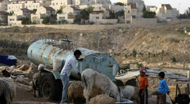 Palestinian Bedouin feed their animals near the Maale Adumimm Jewish settlement in the occupied West Bank